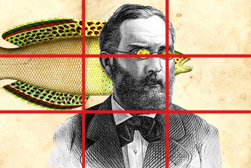Freud Grid by hogret