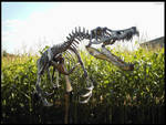 Dinosaur Bones.2