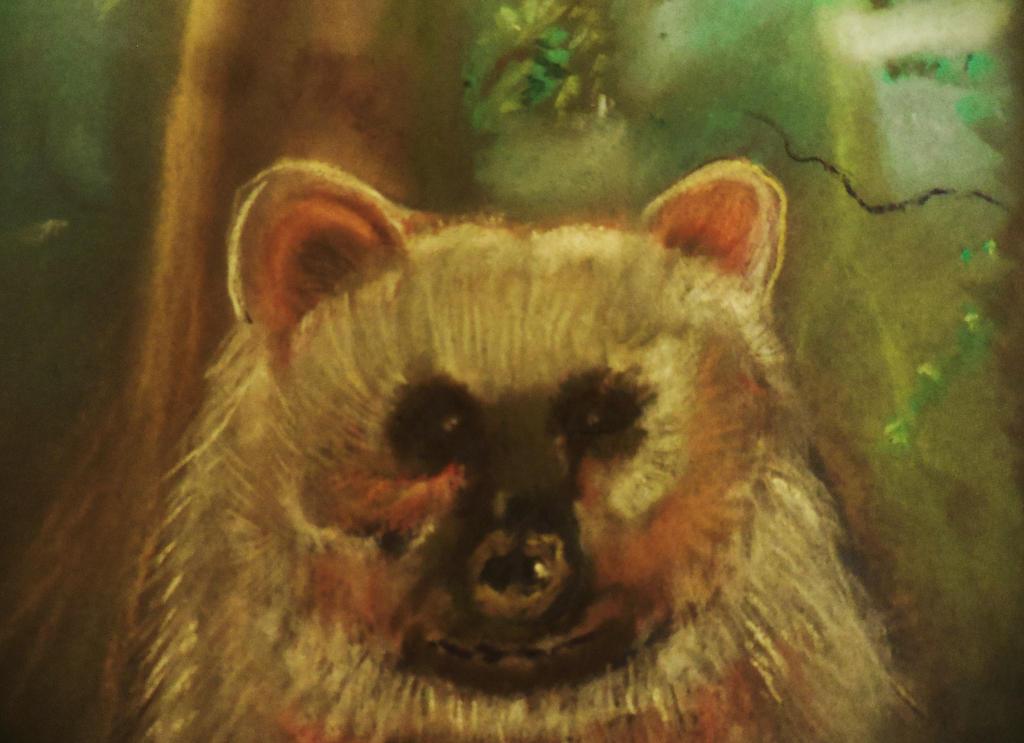 HONEY BEAR by pattywootton