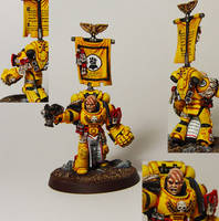 Imperial Fist Veteran Sergeant by cyphercodicer2