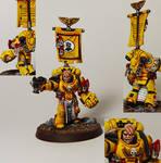 Imperial Fist Veteran Sergeant