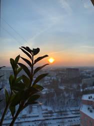 Winter sun by NataliGagarina