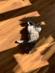 Sunbathing by NataliGagarina