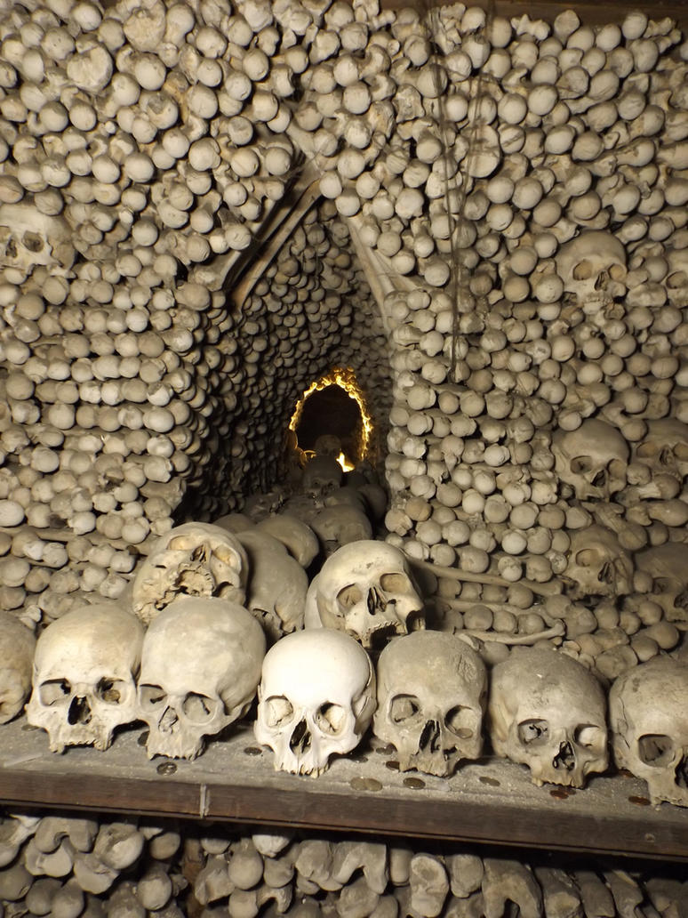 skulls by KTVL-resources