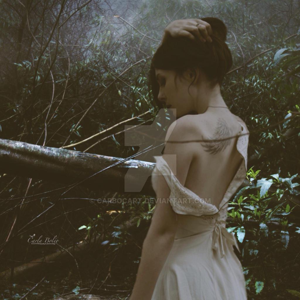 Romantic serie 9 by carbocart