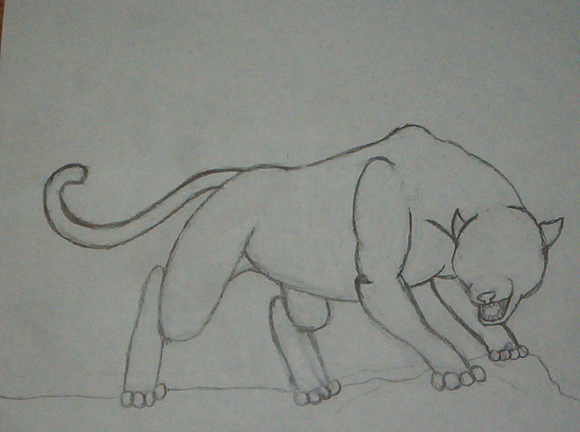 panther drawing outline - photo #3