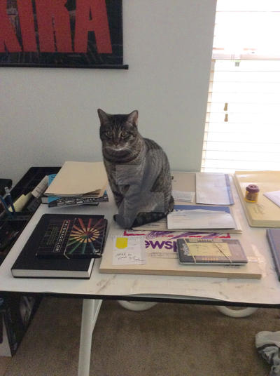 My cat does the work now by Paintedland