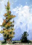 Treehouse Poplar