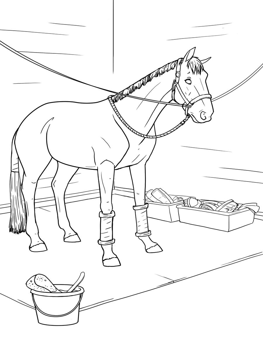Dressage Horse Coloring Pages Sketch Coloring Page