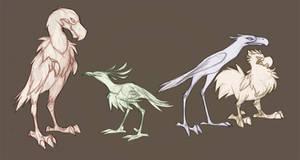 More Terror Birds