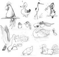 Birdyness by Lintufriikki