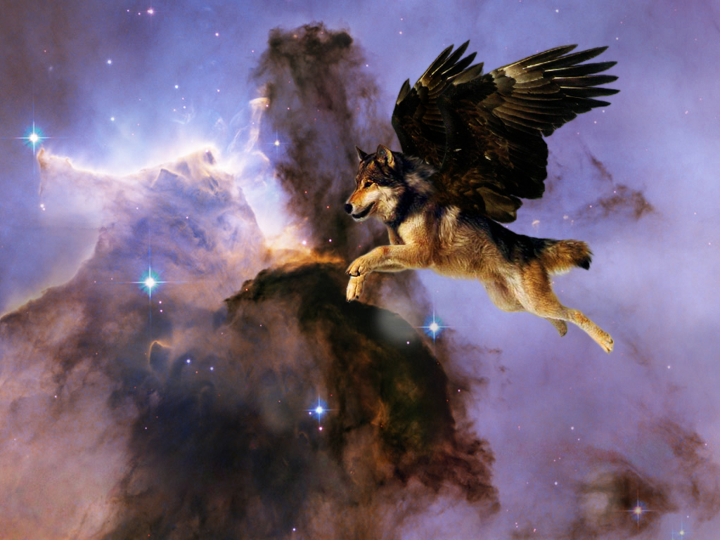 Wolf flying trough nebula by lintufriikki on deviantart for Flying spaces