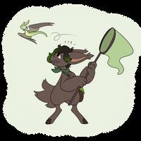 Swol Catching