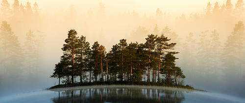 Misty Lake II
