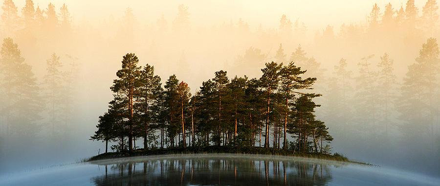 Misty Lake II
