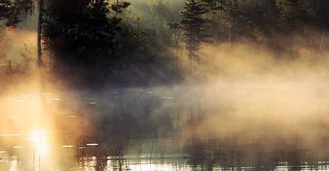 Misty by RobinHedberg