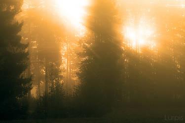Heat by RobinHedberg