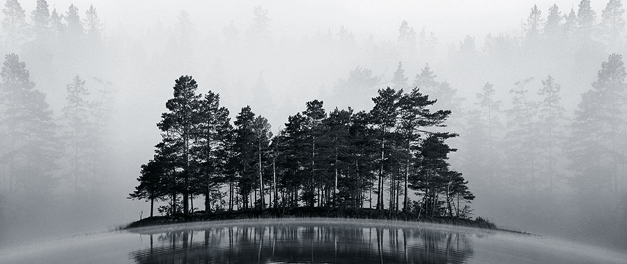 Misty Lake II BW by RobinHedberg