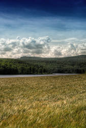 HDR Field by RobinHedberg