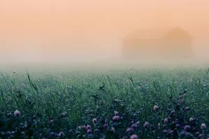 Mist by RobinHedberg
