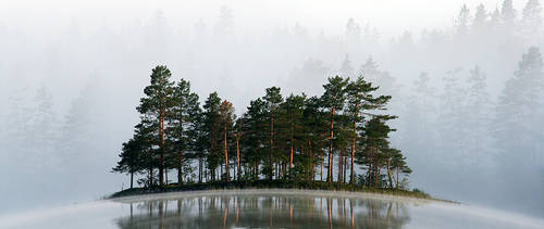 Misty Lake III by RobinHedberg