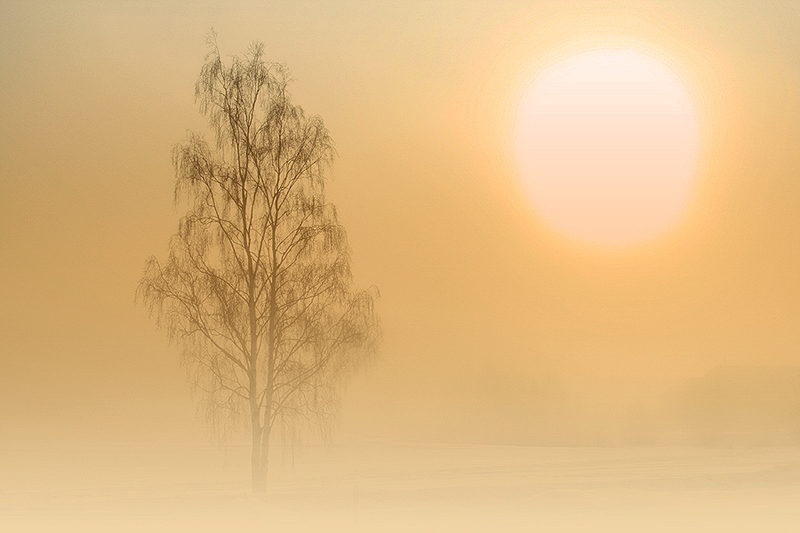 Giant sun by RobinHedberg
