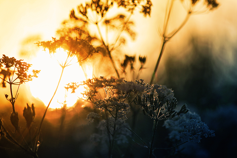 Early sunrise by RobinHedberg