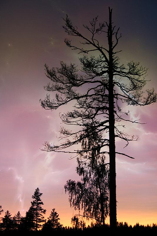One night by RobinHedberg