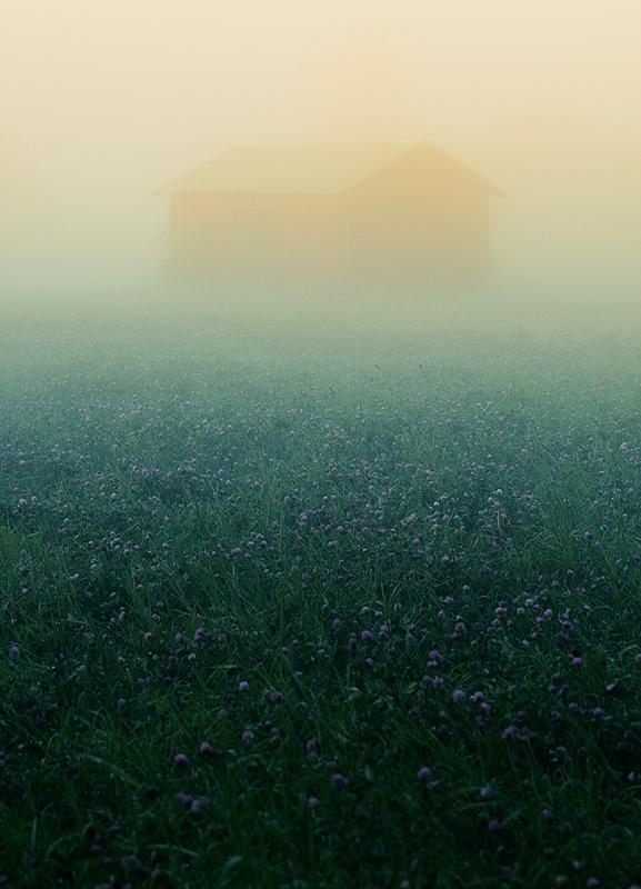 Mist II by RobinHedberg