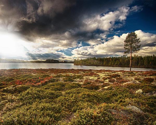 Regnsjon Lake by RobinHedberg