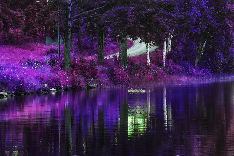 Purple and blue by RobinHedberg