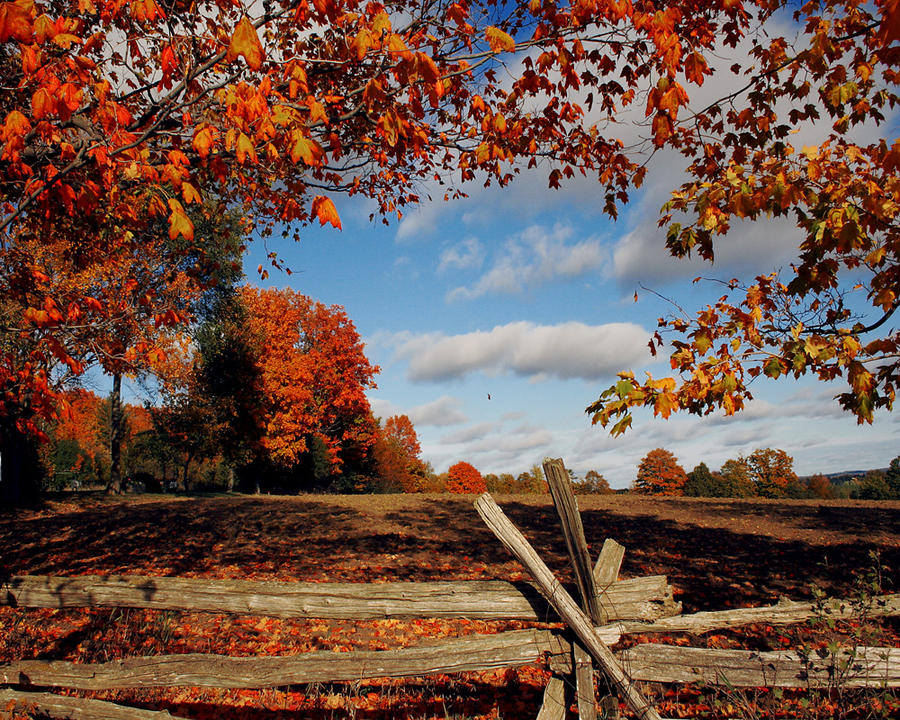 A fall scene by bighairphotography on deviantart - Pics of fall scenes ...