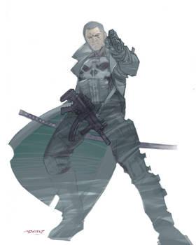 Punisher 2014