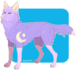 Stars and lace Adopt