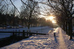 Grand Canal Snow 8