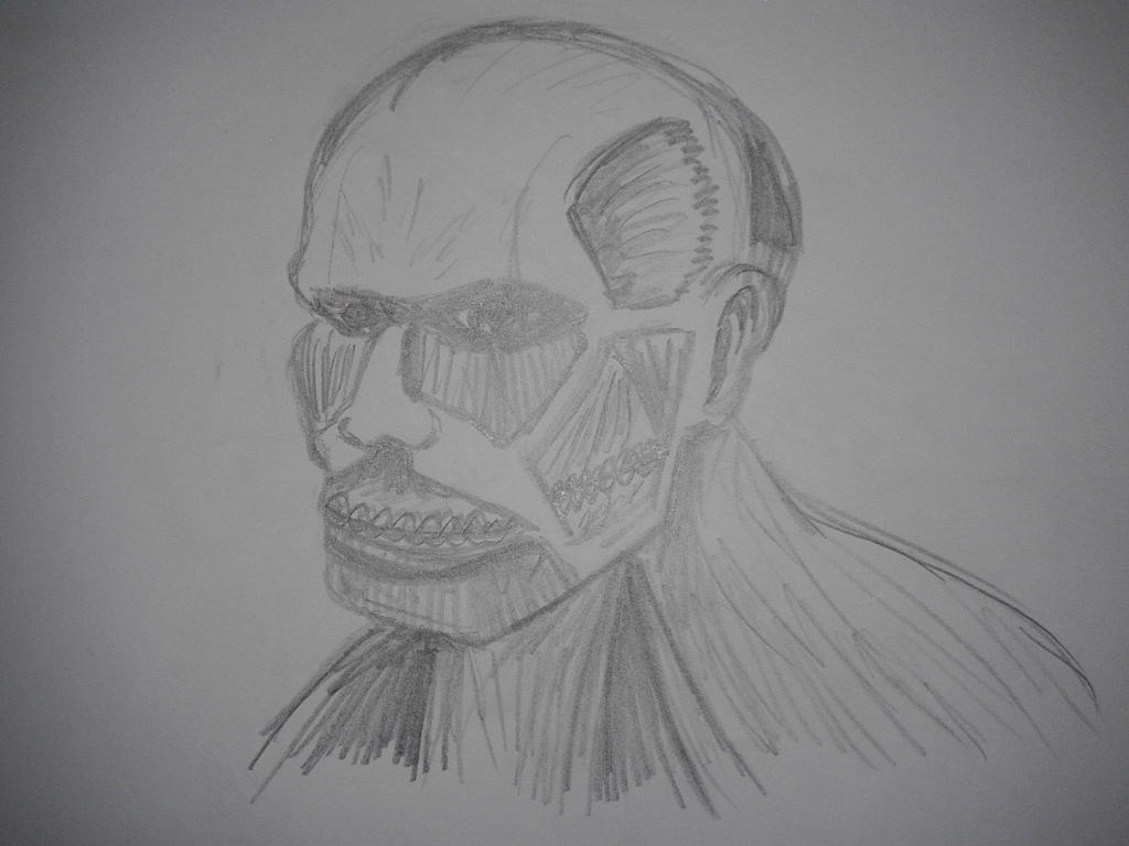 Colossal Titan sketch by SCarpy01
