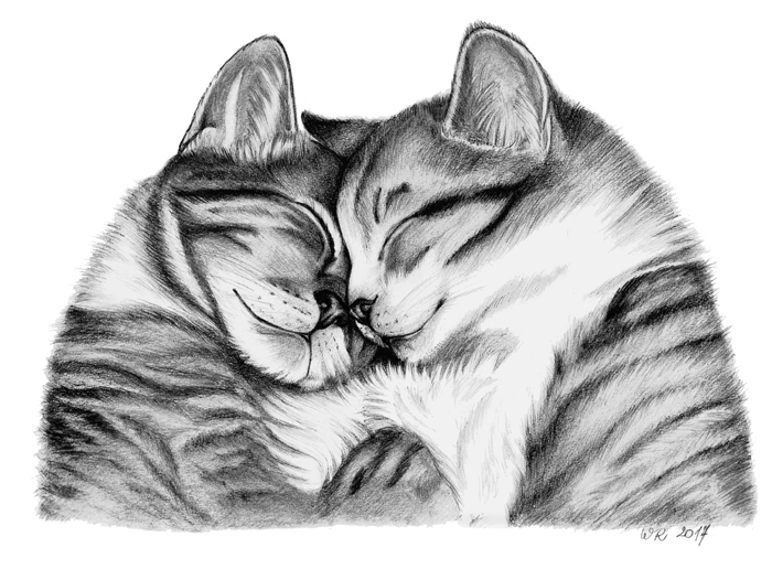 Feline love by Mimose91
