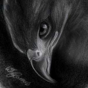 Mimose91's Profile Picture