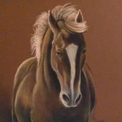 Palomino horse by Mimose91