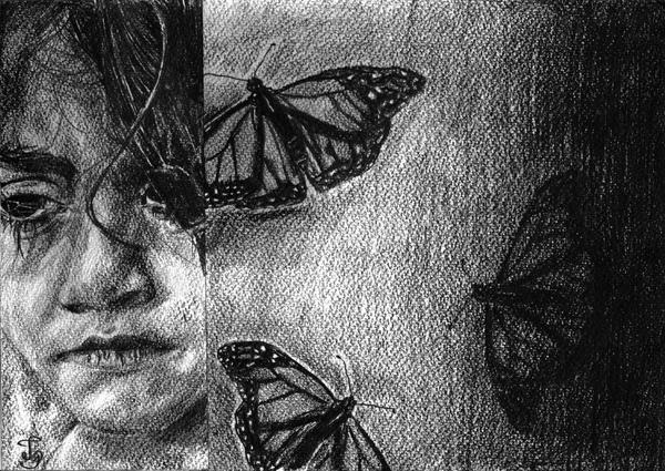 Butterflies by Skippy-s