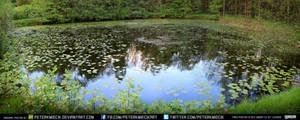 Pond #3 exterior #00008 - CC Free Stock 8