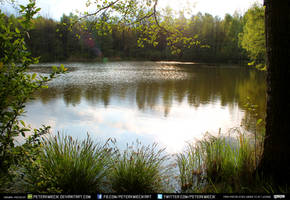 Pond #5 exterior #00010 - CC Free Stock by PeterKmiecik