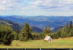 Mountain Forest #10 exterior #00020  CC Free Stock