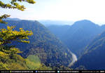 Free Stock River Muntains Trees Valley Landscape