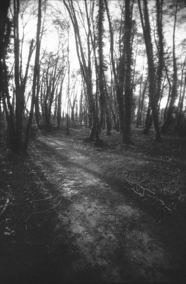Dark Ambient by lupinbushi