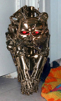 Terminator Kitty