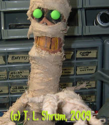 The Mummy Puppet by kidschlocko
