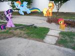 The Ponies look at my broken lightpole