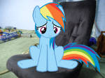 My Little Dashie: The M Rated Game Pt11