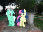 Lyra and Bon Bon Spend the Day Together